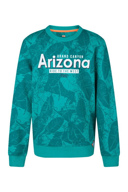 Jongens Arizona sweater Groen