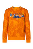 Jongens Arizona sweater, Geel